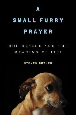 A small fury prayer by Steven Kotler