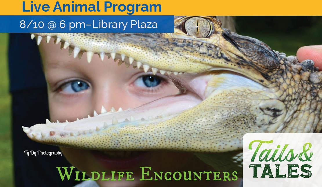 Live Animal Program: Wildlife encounters, August 10 at 6 pm, Library Plaza. Photo of a young child holding a crocodile or alligator