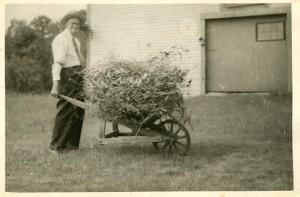 Farmer Ingalls