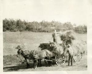 Laton Farm