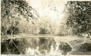 Stevens Pond and Grove