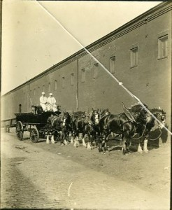 Men driving a wagon