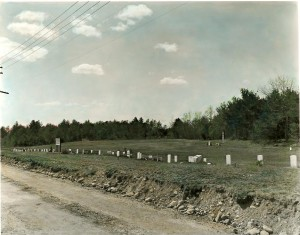 Proctor Cemetery for animals