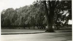 Greeley Park